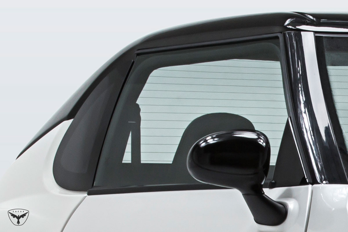 Zacua MX2 detalle ventana