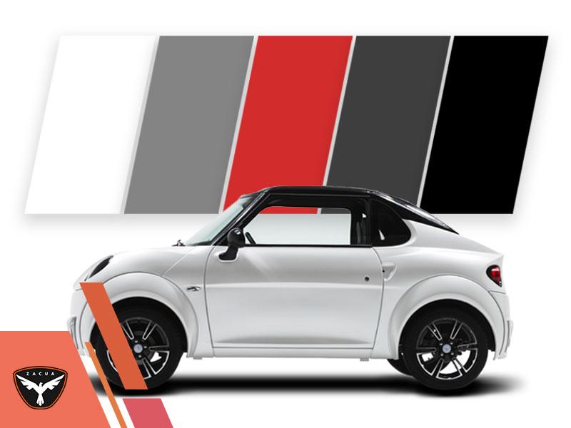 Más que un auto, Zacua es un estado de ánimo colores zacua